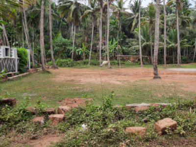 16 Cents Residential Land for sale at Pathiyarakka